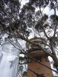 The Terrarium - super-scale terrarium for growing organic produce